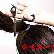 【女のいじめ動画】キーーッ!アンタなんかこうしてやるわ!髪の毛をジョキジョキジョキジョキ・・