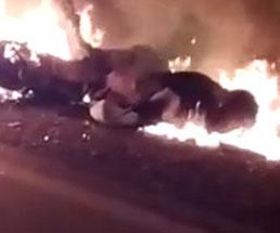 道路での事故が火災まで起きててかなりの惨状になってるんだが…