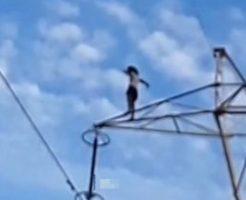 鉄塔から綺麗に飛び降りて自殺を図った女性…