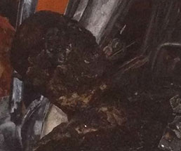 車に閉じ込められ逃げられなかった男性が真っ黒に焼け焦げる…