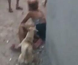 男達に殴られ犬にも襲われる女性は一体何をしたのか…