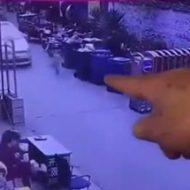 ゴミ箱の間からから飛び出してきた少女が車に轢き殺される…
