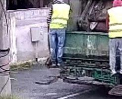 運転手は後ろが見えてないのかな?ゴミ収集車がバックで電柱に突撃w