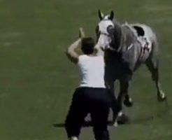 暴走する馬を止めようと女性が通せんぼなんてしようものなら…