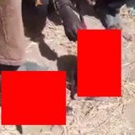 切断された頭を足蹴にする武装集団