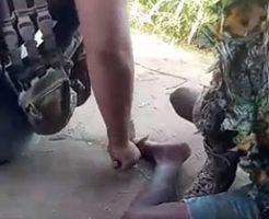 Comando Vermelhoによる残虐な行為がマジで酷い…