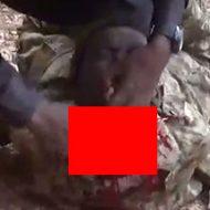 イスラム国の残忍な処刑や戦闘映像