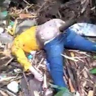 お尻に棒を突っ込まれて死んでる女性は発見されたんだが残酷すぎんか?