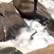 滝で撮影される男性はどう見ても溺れてるw