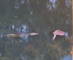 ワニが川で浮いてる男性の死体をお持ち帰り