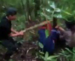ジャングルの中で行われる残虐な暴行と止めを刺す処刑