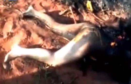【レイプ殺人】犯された少女・・・生きたまま燃やされ下半身だけに・・・