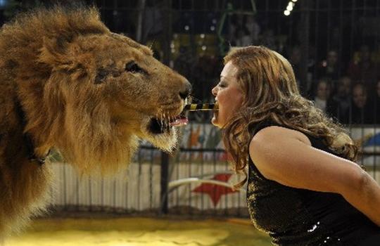 【グロ注意】どんなけライオン飼育しても喰われることあるんだな・・・・